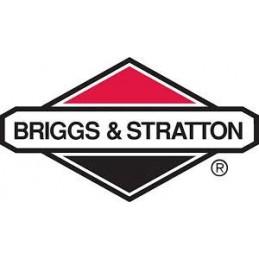 PISTON COMPLET OHV ORIGINE BRIGGS & STRATTON 499284