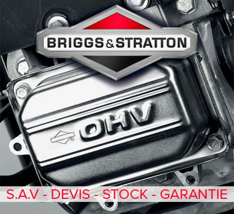 Moteur Briggs and Statton sur Lautoporte.com